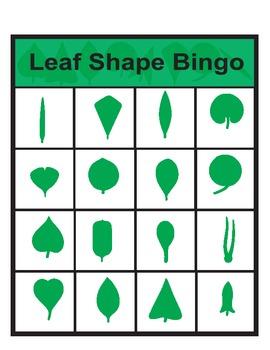 Leaf Shape Bingo