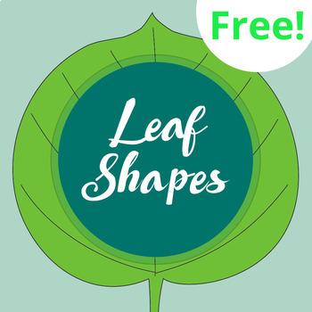 Leaf Shape Worksheet and Poster (FREE!)