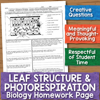 Leaf Structure and Photorespiration Biology Homework Worksheet
