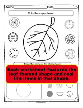 Leaf Themed Shape Review Worksheets - 33 Sheets Covering 10 Common 2D Shapes