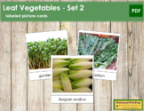 Leaf Vegetable Picture Cards (Set 2)