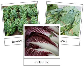 Leaf Vegetable Picture Cards (Set 1)
