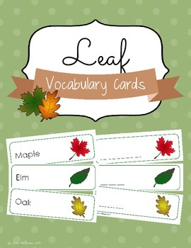 Leaf Vocabulary Cards and Spelling Practice FREEBIE