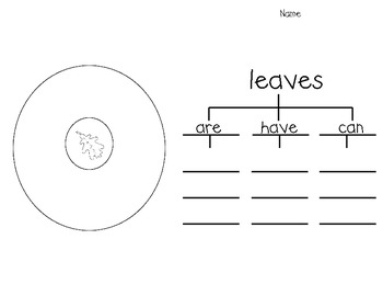 Leaf Writing (includes circle and tree maps)