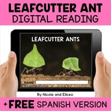 Leafcutter Ant Reading Comprehension for Google Classroom