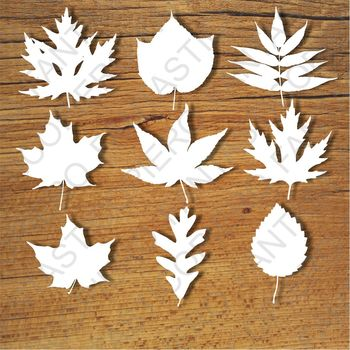 Leafs SVG files for Silhouette Cameo and Cricut.