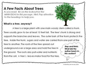 Leafy Literacy Activities