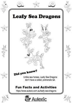 Leafy Sea Dragon Activity Book