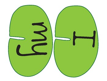 Leap Frog Sight Words