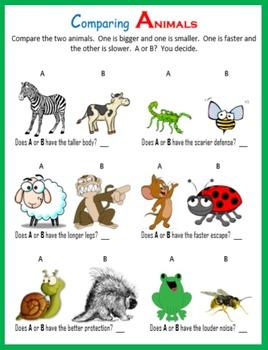 Leap Year:  Fun Math Activities