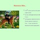 Learn About Rousseau
