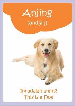 Learn Bahasa Indonesia - Animals Electronic FlashCard