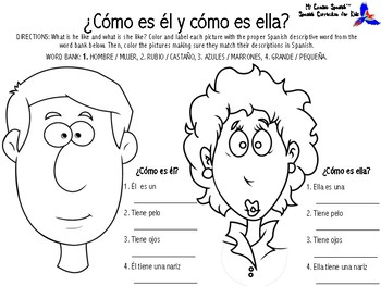 Learn Descriptive Words in Spanish! (Physical Appearance)