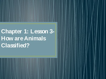 Learn How Animals Are Classified!