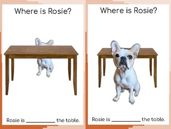Prepositions with Rosie the Frenchie Dog FULL