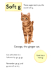 Learn The Phonic Sound Soft g (as in ginger) Learn To Read