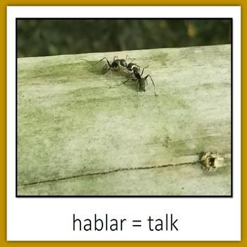 Learn Wildlife Words in Spanish, Book 3
