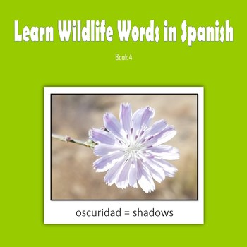 Learn Wildlife Words in Spanish, Book 4