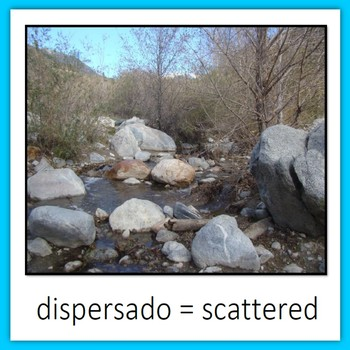 Learn Wildlife Words in Spanish, Book 6