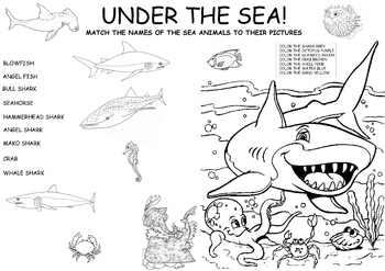 Learn about Life under the Sea