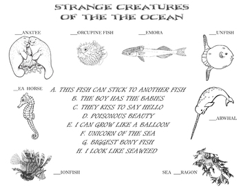 Learn about Strange Creatures of the Oceans