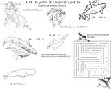 Learn about the Ocean's Mammals