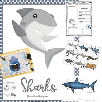 Learn and Teach about Sharks of the World