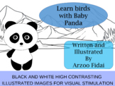 Learn birds with baby Panda