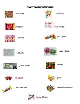 Learn how to classify using candy! (Student Activity)