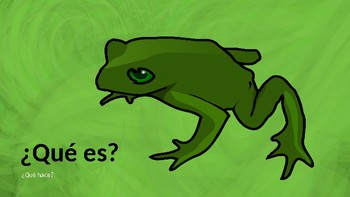 Learn the Animals of the Jungle in Spanish! (Presentation with Q&A)