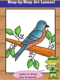 Directed Drawing. Learn to Draw a Bluebird!