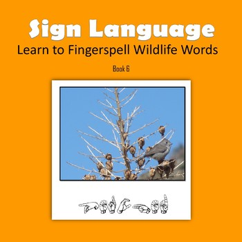 Learn to Fingerspell Wildlife Words, Book 6