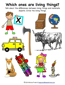 Learn to Read Letter X Activity Pack