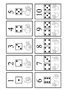Learn to count coloring dice