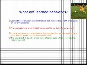 Learned Behaviors Power Point