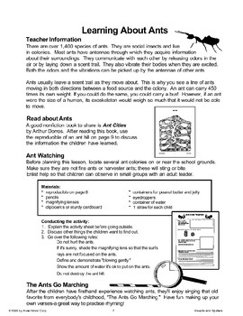 Learning About Ants