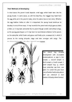 Learning About Bugs, Part 1 A-C