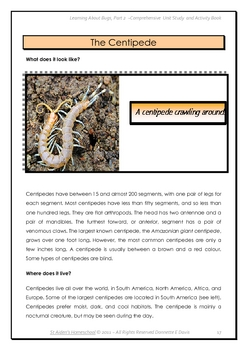 Learning About Bugs, Part 2 D-M