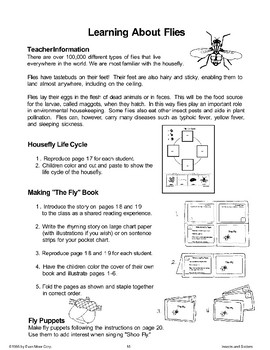 Learning About Flies
