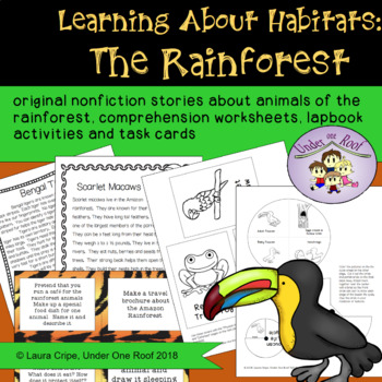Learning About Habitats: The Rainforest