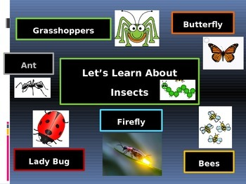 Learning About Insects; Butterflies, Grasshoppers, Ants, B