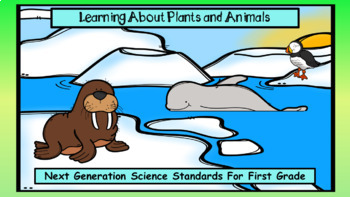 Learning about Plants and Animals in First Grade (NGSS)