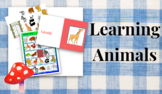 Lesson Plan Learning Animals