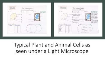 Learning Diagrams - Cells