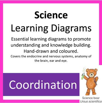 Learning Diagrams - Coordination
