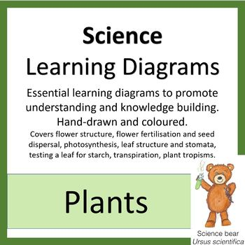 Learning Diagrams - Plants