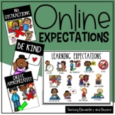 Learning Expectations for Online Virtual Meetings, Distanc
