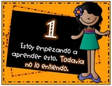 Learning Scale Posters - Spanish
