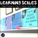Learning Scale Posters and Practical Tips