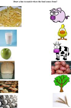 Learning Worksheets about the Food we Eat
